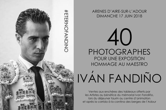 Expo Ivan Fandiño Aire sur Adour
