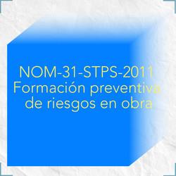nom31stps2011 riesgos