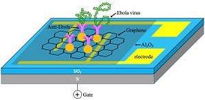 biosensors-2lr76ag-300x146.jpg