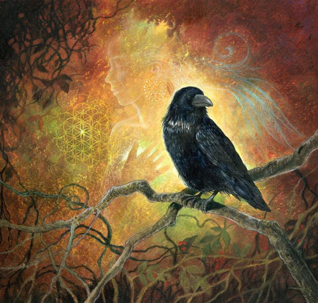 RavenR
