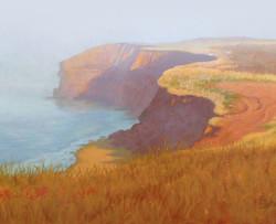 Foggy cliffs of CavendishR