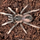 """Thumbnail: Sericopelma sp. rambala 2-3 instar (1"""")"""