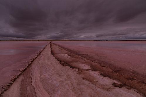 Pink - PG0320005