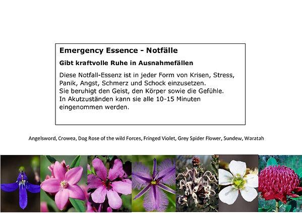 Emergency-Essence.jpg