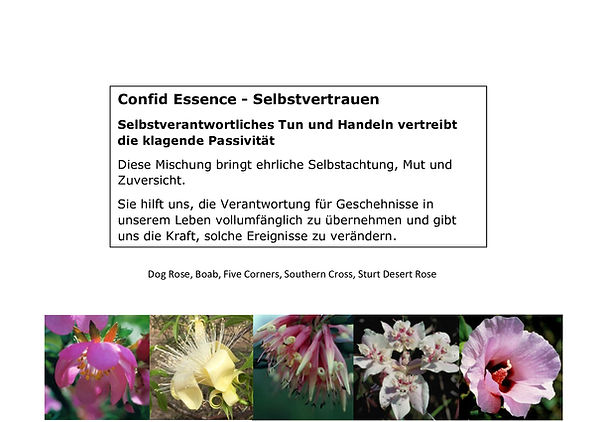 Confid-Essence.jpg