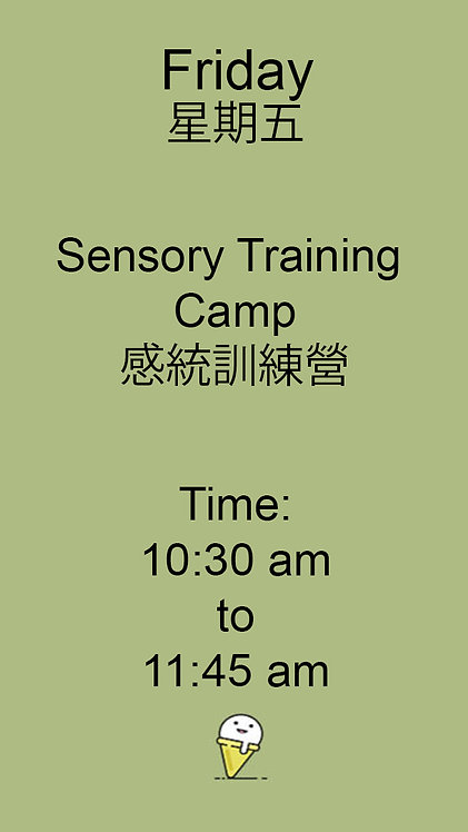 Sensory Training Camp 感統訓練營