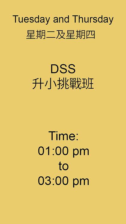 DSS 升小挑戰班 1:00 pm- 3:00pm