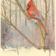 Cardinal-620x800.png