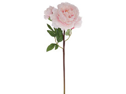 Dekorations blomster