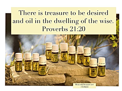 Oil in the Dwelling of the Wise Proverbs 21:20