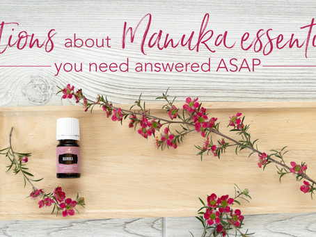 How do you use Manuka Essential Oil?
