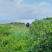 Anne Hutcheson in Labrador.jpg