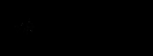 logo trasp  horisontal big.png