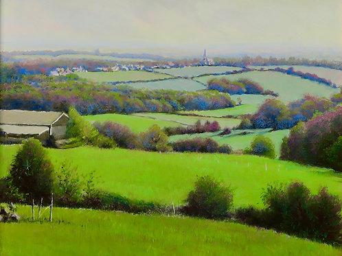 Sussex Spring