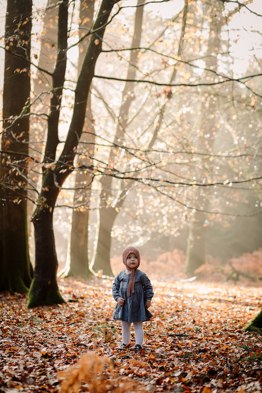 little girl one her own in the autumn leaves, beautifu light through the trees. stephanie atkins photography