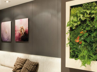 Lienzos Naturados...naturaleza decorativa para tu hogar.