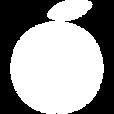Didi logo white copy.png