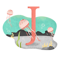 J para las medusas