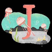 J для медузы