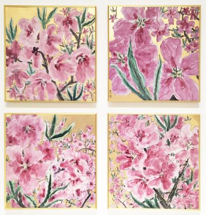 Peach Blossom 桃·色