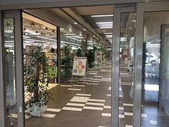 Giorgione_ingresso.JPG