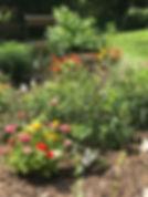 MH Butterfly Garden 7 29 2018.jpg