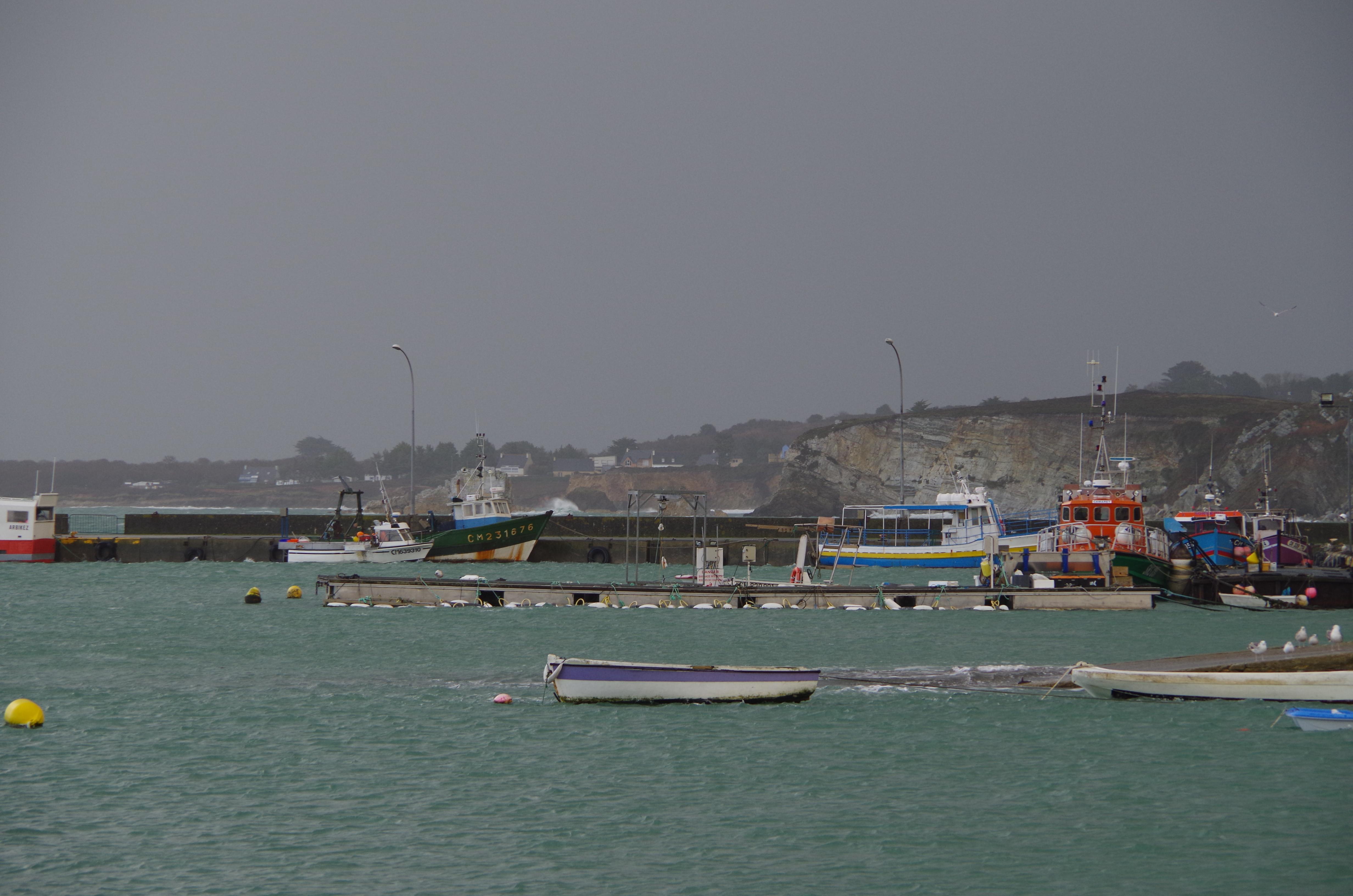Port de pêche de Camaret