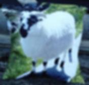 Shabby Chick, photo cushion