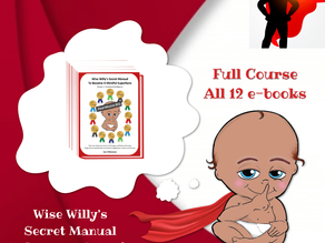 You Can Now Purchase The Entire Wise Willy Course!