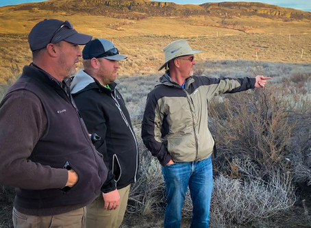 """David McLay-Kidd on """"QuickSands"""" at Gamble Sands 