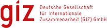 giz-logo_edited.png