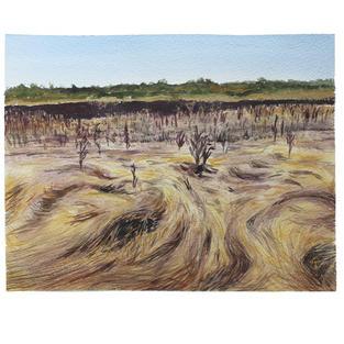 "Dry wetland grasses 11"" x 9"" watercolor"
