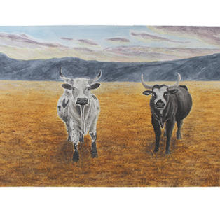"""Two cows 15"""" x 11"""" watercolor SOLD"""