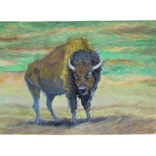 "Buffalo in grasslands 13"" x 9"" acrylic on paper"
