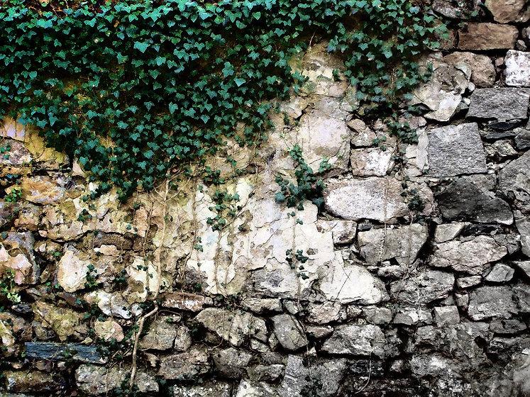 06-cascade falls.jpg