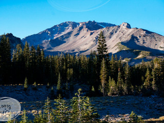 Mt Shasta and the End of The World