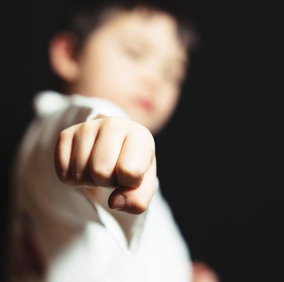 Как выбрать единоборства для ребенка?