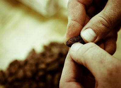 Artisan chocolate in Torrance, CA