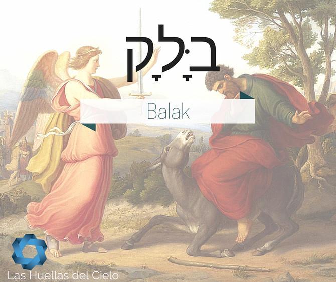 Porción semanal de la Torah: Balak
