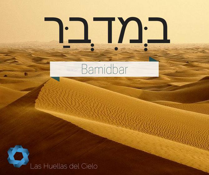 Porción Semanal de la Torah: Bamidbar