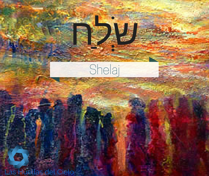 Pensamientos de la Mesa de Shabat – Porción semanal de la Torah Shelaj