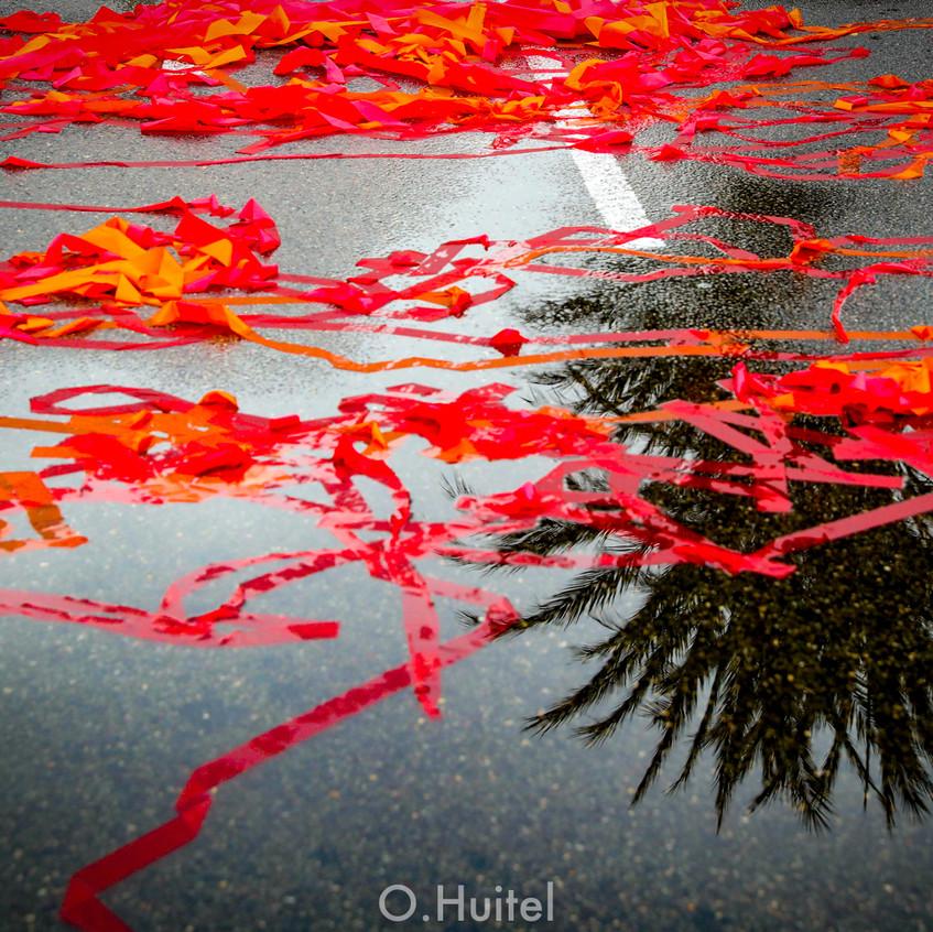 Bataille de Fleurs.