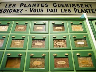 La Maison des Plantes : bien-être au naturel
