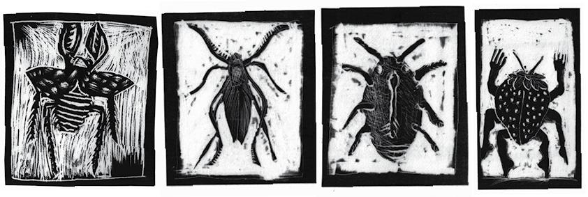 käfer4.jpg