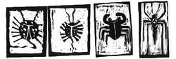 käfer8.jpg