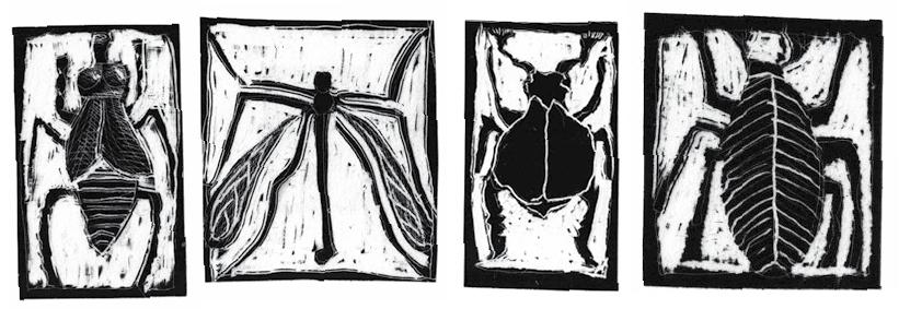 käfer.jpg