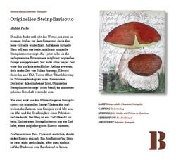 Body_Das Mykologische Alphabeth9