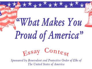 Americanism Essay Contest