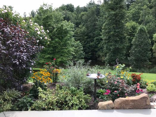 Lodge garden 2