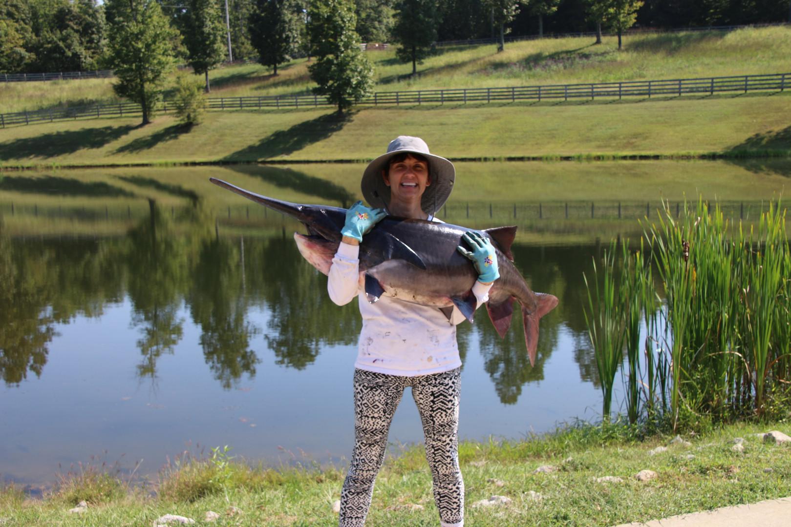 Paddle fish catch pond 2017